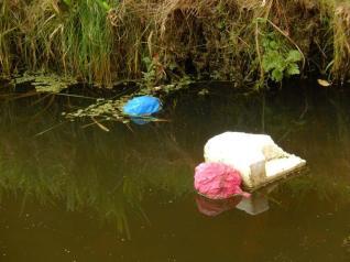 balloons-in-woodland-stream-netherlands-2014